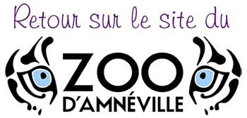 zoo-amneville copie